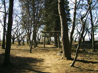八幡崎舘跡(岩瀬八幡神社)